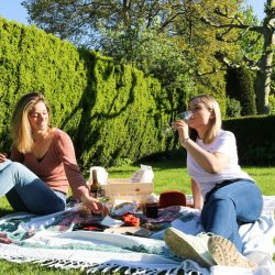 picknick-sodelicious-3